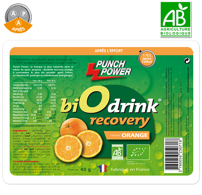 BIODRINK RECOVERY ORANGE BIO SACHET 40 Gr PUNCH POWER